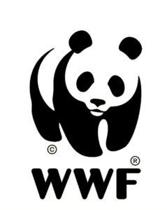 Greenjoy & WWF Plastic Vissen arrangement