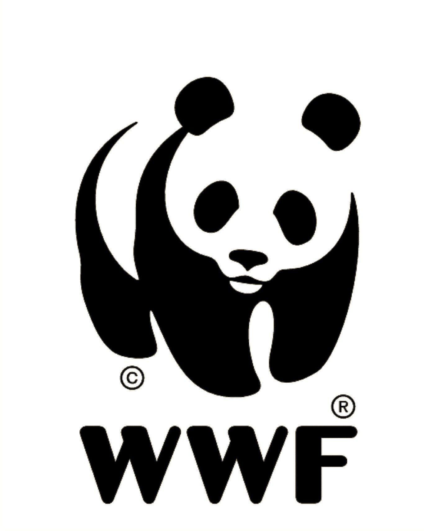Greenjoy & WWF Plastic Vissen arrangement